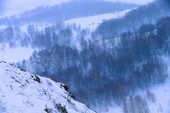 DP1U2100 (c0466art) Tags: 2015 chinese inner mogonlia grassland winter season trip travel early morning sunrise momemt cloudy blue tone mountain white snow world cold weather beautiful landscape scenery trees light canon 1dx c0466art