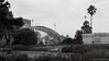 View of the Sydney Harbour Bridge from the Botanical Gardens (TwoTripleFive) Tags: australia backpacking downunder travelling sydneycbd sydney sydneybotanicalgardens botanicalgardens nature harbourbridge bridge landmark