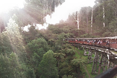 Puffing Billy (misty1925) Tags: puffingbilly steamtrain victoria steam bridge dandenongranges belgrave