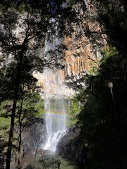 Purling Brook Falls, Springbrook Plateau, on 9th June (tanetahi) Tags: springbrooknationalpark stream waterfall cascade queensland australia