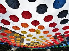 REGEN.WALD (NoDurians) Tags: schirme umbrella umbrellas dornerplatz wien vienna 1170 spaceandplace regenwald