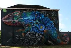 Chameleon (Rick & Bart) Tags: hasselt limburg belgië city urban graffiti art rickvink rickbart canon eos70d mural streetart robinnas flare gününeniyisi thebestofday