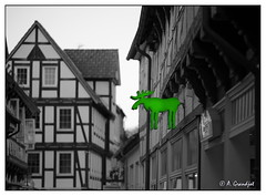Green elk (Jemele10) Tags: fx nikon d610 nikond610 celle germany deutschland altstadt city stadt reklame schild werbung sign leutreklame advertisement oldtown walimex135 135 samyang135 tiefenschrfe unschrfe splash