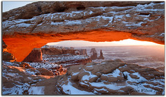 The Glow (Robin-Wilson) Tags: sunrise utah canyonlands moab freshsnow mesaarch washerwomanarch 9degrees iceyroads bucketlist nikond800 1635mmf4