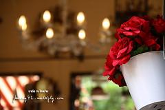 Palio Inn review by มาเรีย ณ ไกลบ้าน_061