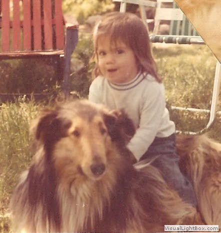Lassie #1