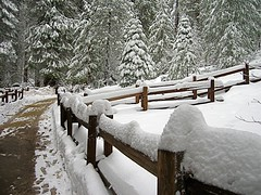 Kings Canyon National Park (Travelingtuna) Tags: winter snow nature fencepost kingscanyonnationalpark