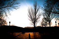 Same sunset wherever you go (Leo Hidalgo (@yompyz)) Tags: blue sunset espaa art luz sol nature azul cat canon eos spain europa exposure gatos ronda invierno caca puesta malaga mundo pitufo tierra t3i universo 600d