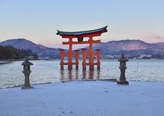 Light Snowy Miyajima Torii [Worldheritage] (h orihashi) Tags: japan gate shrine pentax hiroshima miyajima 日本 torii k5 itsukushima 広島 世界遺産 日本三景 citrit hatsukaichishi pentaxk5 worldferitage