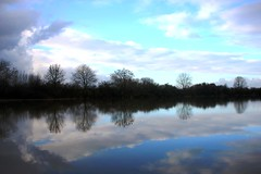 Floodplains 7 (M*A*S*L) Tags: blue trees sky reflection tree water netherlands canon reflections river landscape eos mirror bomen flooding spiegel nederland thenetherlands bluesky boom floods ijssel landschap rivier floodwater spiegeling floodplains hoogwater mygearandme mygearandmepremium mygearandmebronze mygearandmesilver mygearandmegold rememberthatmomentlevel1 rememberthatmomentlevel2