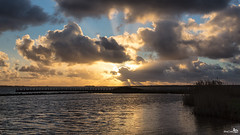 New years day sunset (BraCom (Bram)) Tags: sunset holland reed clouds canon reflections zonsondergang widescreen jetty nederland thenetherlands wolken rays sunrays 169 riet ouddorp newyearsday zuidholland goereeoverflakkee grevelingen steiger spiegeling zonnestralen portzlande stralen nieuwjaarsdag canonef24105mmf4lisusm bracom canoneos5dmkiii