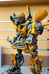 Meeting Bumblebee