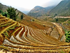 Trekking in Sapa (In My Shoes Travel) Tags: mountains trekking landscape hiking vietnam backpacking tribes ricepaddies sapa hmong blackhmong lphills