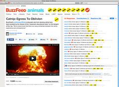 Buzzfeed - Catnip: Egress to Oblivion?
