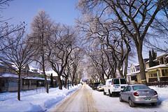 Frosty Day (bryanscott) Tags: building architecture winnipeg hoarfrost manitoba hoar