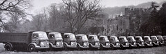 Commer Tipper Line Up (colinfpickett) Tags: tipper 1960s classictruck commer vintagetruck daysgone famoustruck