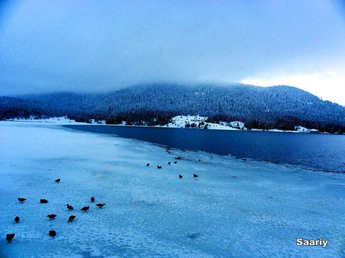 Lake ABANT in winter