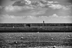 morning stroll (zip po) Tags: morning ireland blackandwhite howth dublin monochrome mono harbour