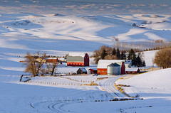 Palouse Red Barns Winter (Ryan McGinty) Tags: winter snow landscape washington farmland farms palouse redbarns ryanmcginty