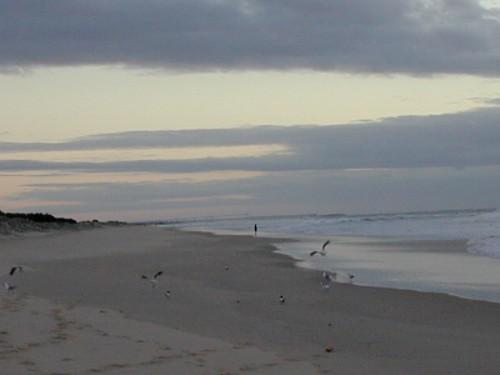 Beach Gold Coast - 22