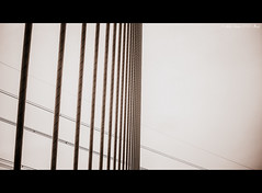 Day 19, Outtake. (Marika II) Tags: bridge cables riverdee deeside cablestayed flintshirebridge