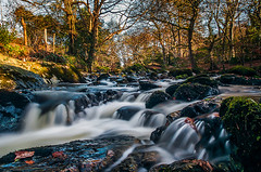 Kilbroney River (Jarlath Gray) Tags: longexposure autumn leaves forest woodland northernireland mournemountains countydown warmcolours kilbroney mossyrocks 2013 themournes themournemountains rusticcolours thefairyglen kilbroneyforestpark jarlathgrayphotography kilbroneyriver