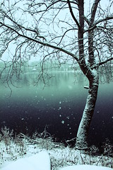 (jillian elena) Tags: travel blue winter snow cold tree ice nature water weather america canon cool pretty pennsylvania snowy north adventure explore northern buckscounty