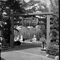Fujifilm Neopan 100 Acros (leonlee28) Tags: fujifilm fujifilmneopan100acros neopan100 neopan acros100 acros lubitel lubitel166 6x6 mediumformat 120mmfilm tlr twinlensreflex squareformat squarefilm squareformatfilm rodinaldeveloper ro9 ibuyfilmnotmegapixels ibuyfilm ishootfilm filmcamera film filmphotography filmslr filmisnotdead bw blackwhite blackandwhite photography flickr black white monotone mono monochromatic monochrome chinesetemple asian leonlee leonlee28 toycamera