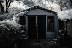 The shed- (erglis_m (Mick)) Tags: trees blackandwhite bw canon ir blackwhite fineart canoneos20d infrared infraredfilter