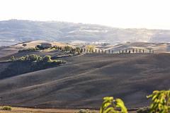 campagna toscana (Gio8310) Tags: toscana casale valdorcia tuscany