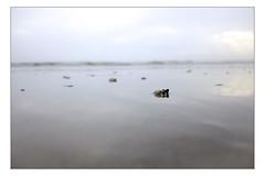 DSCF0172 copie (sylvainbachelot) Tags: baule pornichet plage sable mer ciel vague matin soir soleil mauijim coquillage toile de bord lumire mlancolie fujix70 panorama nature
