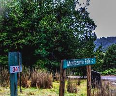 Williamsford, Tasmania (paulledger81) Tags: montezuma falls tasmania rosebery australia snake signpost