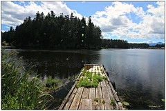 Old Dock (CanMan90) Tags: quennellake dock clouds island trees zuiderzeecampsite camping campsite reflections cedar britishcolumbia cans2s canon rebelt3i outdoors efs1018mmf4556isstm