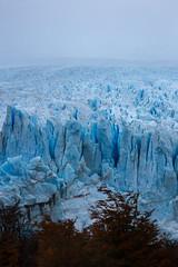 14133722316_49a4ecf485_o (FelipeDiazCelery) Tags: argentina patagonia glaciar perito moreno