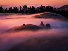 """Dream Together""-Mt.Tamalpais State Park, CA (Nicholas Steinberg photography) Tags: millvalley marincounty marinheadlands marinlandscapes marin northerncalifornia northbay bolinasridge point reyes mttamalpais mttam mttamalpaisstatepark mountain hills warm sunset majestic mystical trees forest people silhouette california sanfrancisco sanfranciscofog sanfranciscobayarea nicholassteinberg"