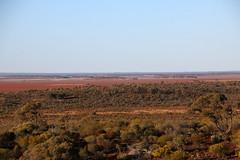 Lake Ballard (15) (Boobook48) Tags: lakeballard antonygormley westernaustralia insideaustralia