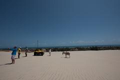 Fortaleza - Cear (https://www.rosanetur.com) Tags: beach ceara lugares pessoas praias rosanetur cumbuco dunas dunes excursoes viagens