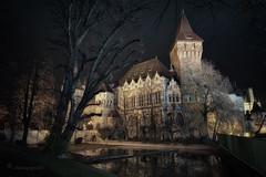 transylvanian (cherryspicks (intermittently on/off)) Tags: wow night transylvania castle building architecture budapest hungary vajdahunyad reflection mood winter dark atmosphere