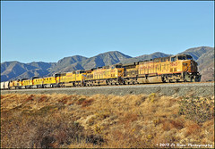 The Blue Sky of Kodachrome (El Roco Photography) Tags: california railroad santafe up train canon outdoors photographer desert rail trains socal sp mojave transportation unionpacific locomotive ge railfan bnsf trainspotting cajon railroads desertlandscape mojavedesert cutoff southernpacific sanbernardino freighttrain sanbernardinocalifornia desertflora inlandempire emd atsf burlingtonnorthernsantafe desertmountains cajonpass es44dc railfans alltrains sd90mac sd70mac stacktrain sd70ace bnsfrailroad traininaction c45accte burlingtonnorthernsantaferailroad movingtrains desertshrub desertbeauty aphotographersnature palmdalecutoff elrocophotography