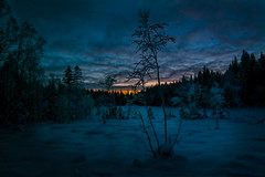 The Blue Hour (Tore Thiis Fjeld) Tags: winter sunset sky snow cold color tree oslo norway forest dark twilight glow samsung bluehour wilderness crosscountryskiing nordmarka tømte nx210 highesthonor
