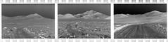 Negative Space / Long Walk (joshuammulligan) Tags: california film strange analog canon rebel lomo lomography triptych empty negative analogue wilderness desolate whitemountain fujineopanacross