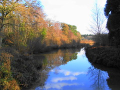 Trees and Reflections at Stover (Evergreen2005) Tags: camera digital zoom kodak z740