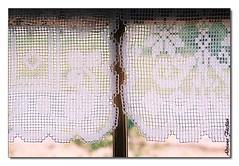 3955 31 (Adriana Füchter ... thank you for 12 Million View) Tags: adriana fuchter crivo renda criveiras artesanato delicadeza trabalho manual hand maos adrianafüchter vintage retro antigo arte art objetos objeto reto coisas object stilllife significâncias caseiros things governadorcelsoramos santacatarina brasil brazil