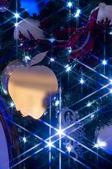 Decorartions of Xmas Tree <Snowwhite> (Omotesando, Tokyo, Japan) (t-mizo) Tags: christmas xmas light japan night canon tokyo illumination sigma christmastree disney harajuku    xmastree lr omotesando lightroom    sigma50mm omotesandou     omotesandohills  lr4 sigma50 sigma5014 sigma50mmf14 sigma50mmf14exdghsm sigma50exdg sigma50mmf14exdg sigma50f14 eos60d sigma50mmhsm sigma50mmf14dgex lightroom4