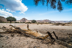 """Ephemeral River in Namibia • <a style=""""font-size:0.8em;"""" href=""""https://www.flickr.com/photos/21540187@N07/8291662343/"""" target=""""_blank"""">View on Flickr</a>"""