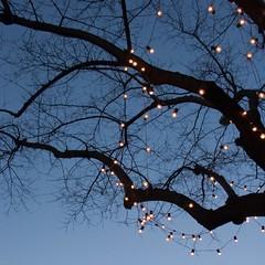 Christmas lights (Julio Lpez Saguar) Tags: madrid christmas espaa lights navidad luces spain bulbs bombillas plazaiglesia juliolpezsaguar