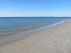 Footprints (rebeccakensil) Tags: ocean winter beach ma cape cod falmouth chapoquoitbeach