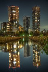 Tokyo Reflection (Yuya Sekiguchi) Tags: nov longexposure november autumn light reflection green nature water japan night skyscraper photoshop buildings tokyo mirror pond weed scenery raw ueno surface  tall nightview ultramarine      renaissance hdr clearsky uenopark latefall 2012        11 shinobazunoike  parktower   d90   photomatix    renascence     taitoward   2012