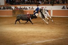 Provincia Juriquilla_2011 - 9 (Eduardo de la Garma de la Rosa) Tags: canon toros corrida lida bestia 2011 rejoneador pablohermosodemendoza eduardodelagarma mamonet