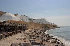 Hammamet (grolli77) Tags: tunesia medina afrika hammamet citywall tunesien stadtmauer nordafrika